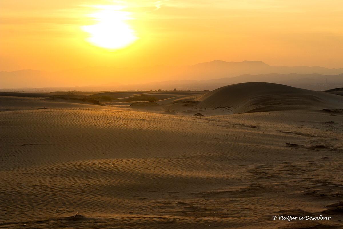 Des de qualsevol racó podrem veure precioses postes de sol al delta de l'ebre