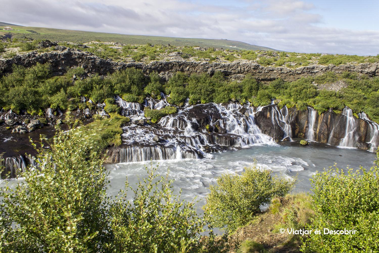 Islàndia, juliol 2013 – Dia 9: Per fi veiem foques de ben a prop!