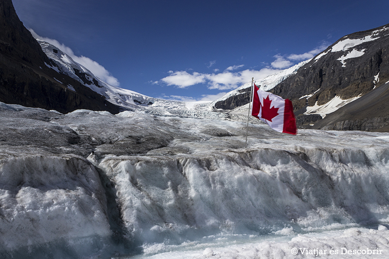 Oest de Canadà, juliol 2015 – Dia 8: Arribem al Jasper National Park