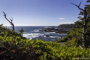 Oest de Canadà, juliol 2015 – Dia 12: Arribem a l'Illa de Vancouver!