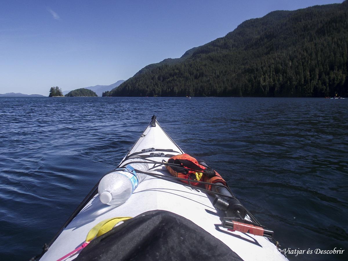 Oest de Canadà, juliol 2015 – Dia 16: Fent kayak a Telegraph Cove