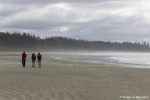 Oest de Canadà, juliol 2015 – Dia 13: Els mamífers marins i les platges del Pacific Rim National Park