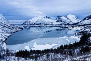 Les Illes Lofoten i l'Illa de Senja: El vídeo del viatge