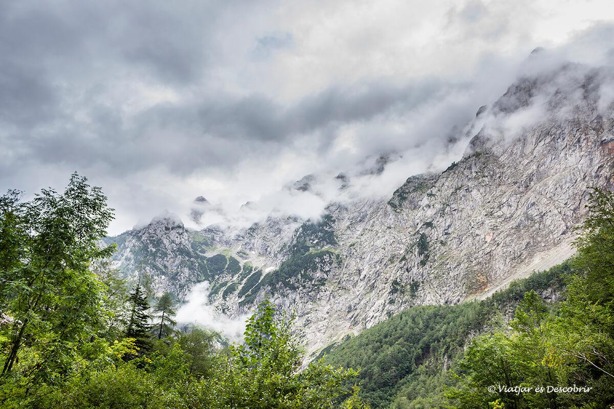 La Vall de Logarska Dolina, un tresor dels Alps eslovens