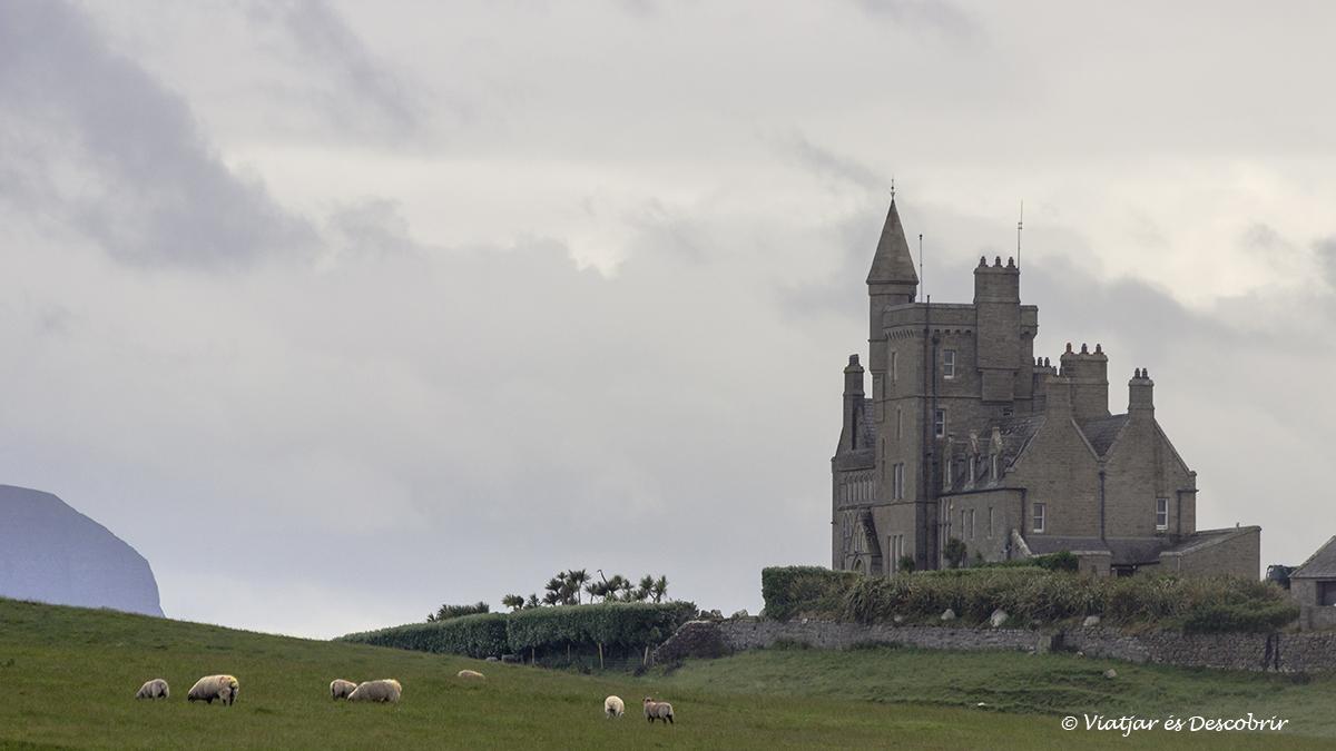Castell de Classiebawn envoltat d'ovelles a irlanda