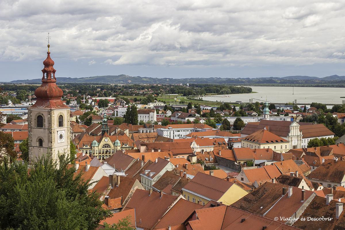 teulades vermlles de la ciutat de ptuj