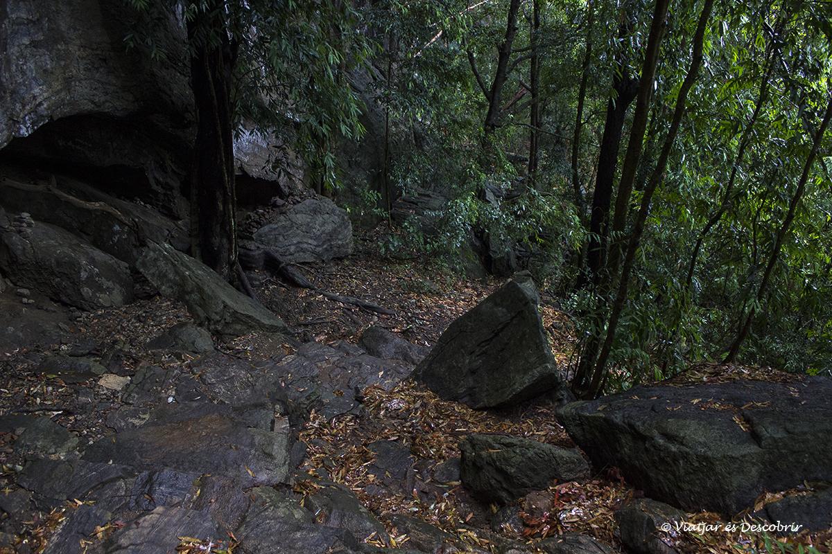 cami ple bosc fins al cim de la pidurangala rock