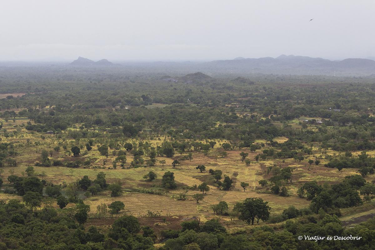 paisatges des de la roca pidurangala a sri lanka