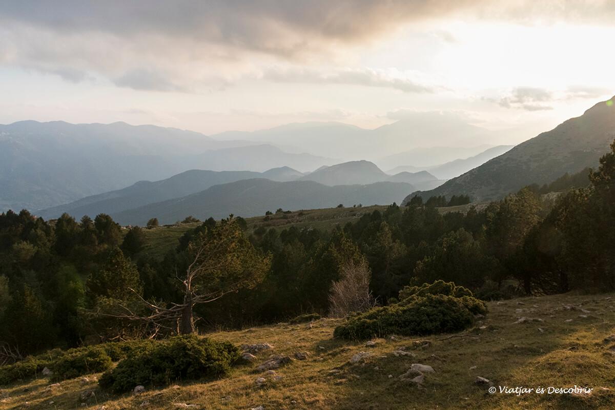 paisatges preciosos durant la brama del cérvol a Catalunya