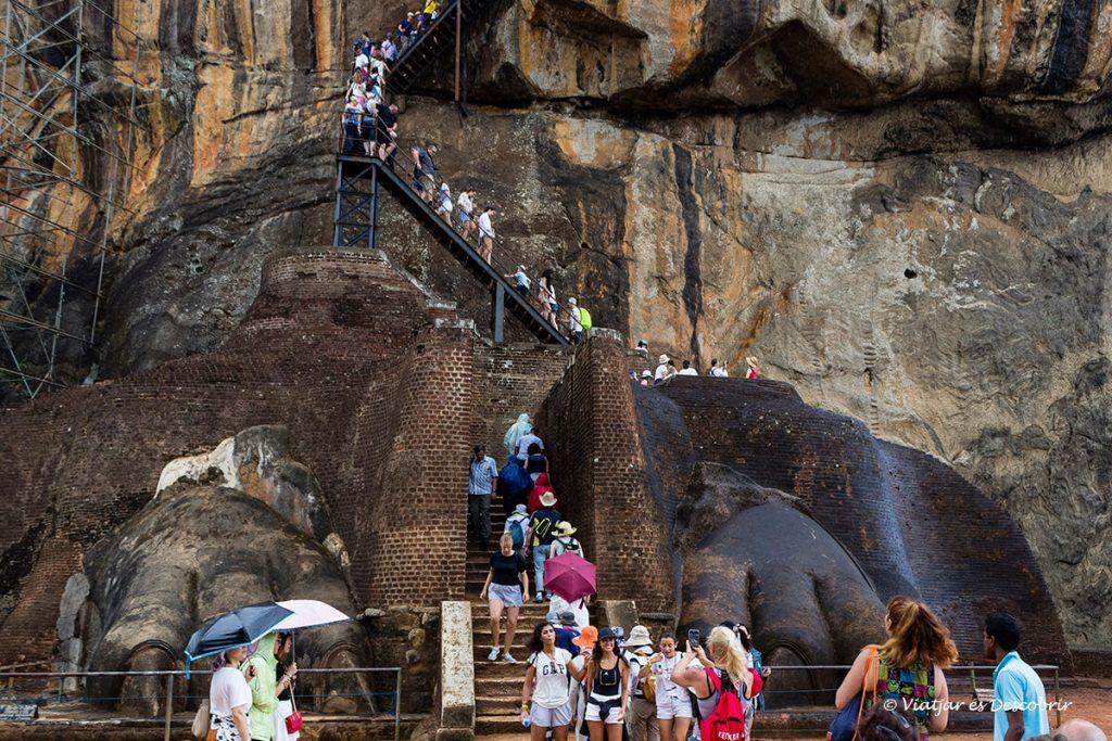urpes del lleo a l'entrada del palau de sigiriya