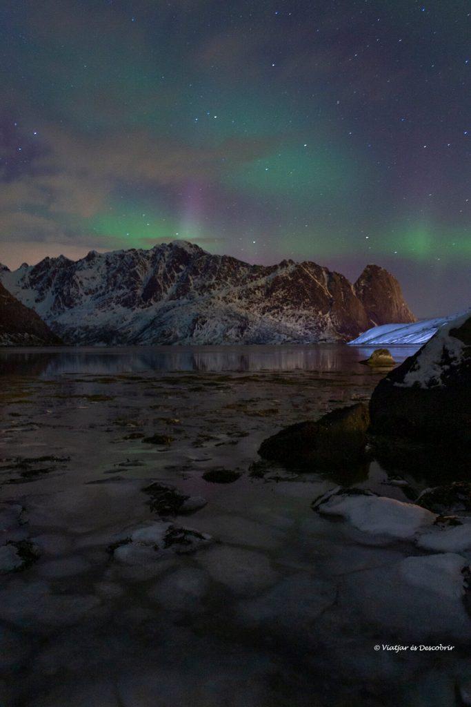 petita aurora boreal per sobre el cercle polar artic