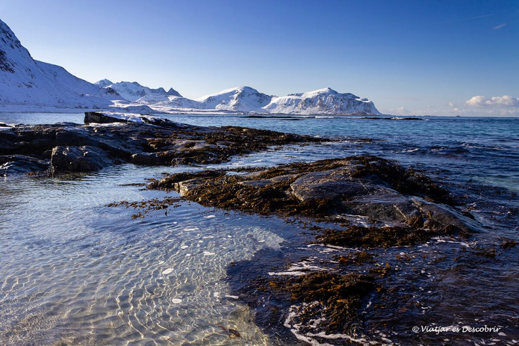platja a la costa nord de les illes lofoten a noruega