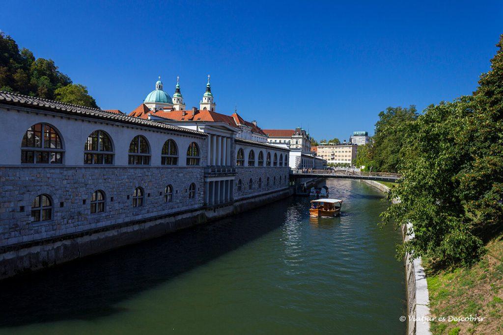afores de la part més cèntrica de ljubljana amb el riu i vegetació