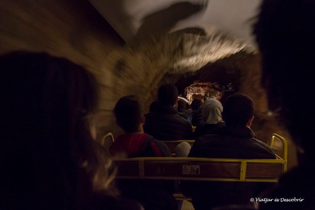 ruta amb tren per la cova postojna