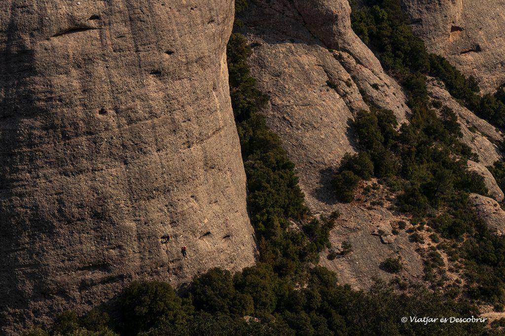 escaladors a una paret vertical de montserrat