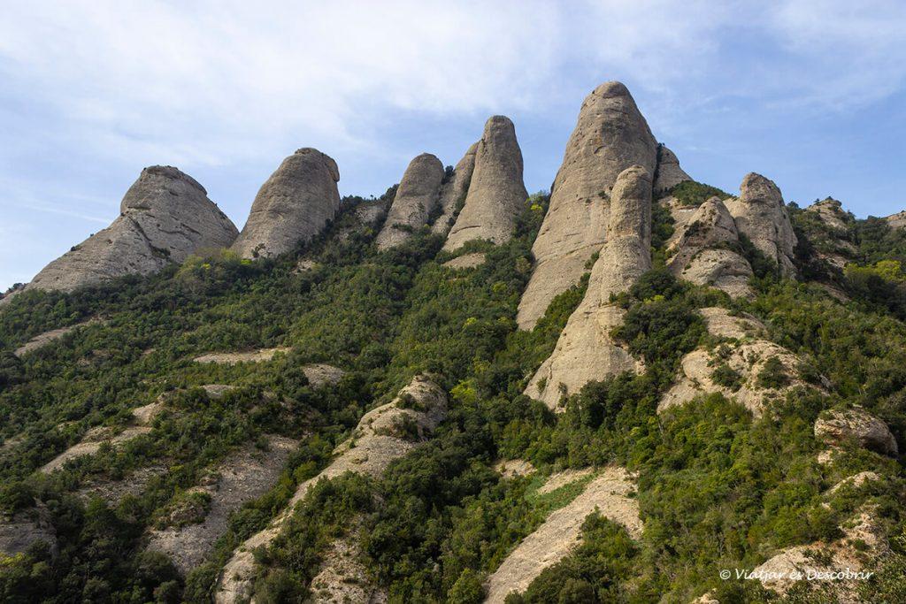 paisatge de roques i arbustos típic de montserrat